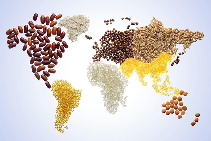 What do major agricultural forecasters say about the 2021/22 global grains and oilseeds season?