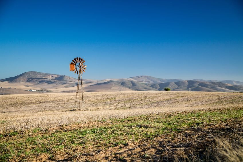 Here are the challenges constraining faster and more inclusive growth in South Africa's agriculture