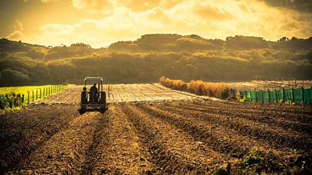 Expropriation Bill aims to bring SA in line with global land ownership policies