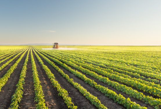 Panel unpacks what is necessary to increase Africa's agricultural productivity