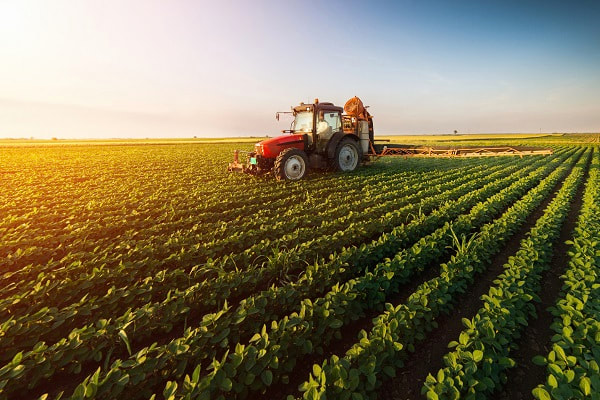 Agriculture remains a star performer in the economy, but still needs govt support