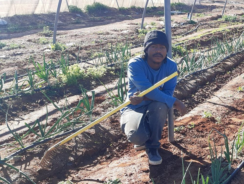 Northern Cape-based wind farms provide support, funding to youth-owned agribusiness